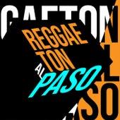 Reggaeton al Paso de Various Artists
