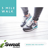 Walking For Weight Loss: 3 Mile Walk de The Jagged Edges