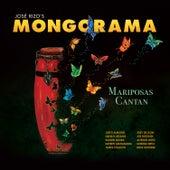 Mariposas Cantan de Mongorama