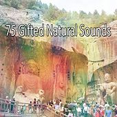 75 Gifted Natural Sounds von Yoga