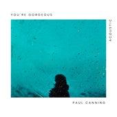 You're Gorgeous (Acoustic) de Paul Canning