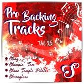 Pro Backing Tracks S, Vol.25 by Pop Music Workshop