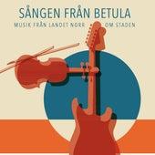 Sången från Betula by Various Artists