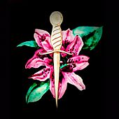 Silver Dagger van Lance Whalen