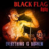 Everything Is Broken de Black Flag