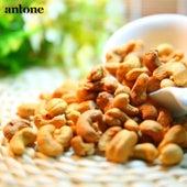 Cashews by Antone