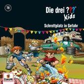 078/Schrottplatz in Gefahr von Die Drei ??? Kids