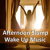 Afternoon Slump Wake Up Music de Various Artists