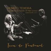 Trem do Pantanal de Renato Teixeira