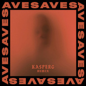 Doubt (Kasperg Remix) by Aves