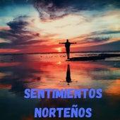 Sentimientos Norteño de Los Incomparables De Tijuana, Los Rehenes, Pimpinela, Rocío Dúrcal