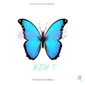 Butterflies by Rich T