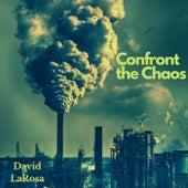 Confront the Chaos de David Larosa