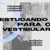 Estudando Para o Vestibular de Various Artists