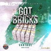 Got Bricks de Vantage