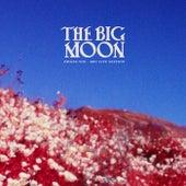 Praise You (BBC Live Session) de The Big Moon