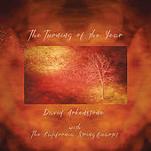The Turning Of The Year by David Arkenstone