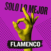 Solo Lo Mejor: Flamenco de Various Artists