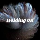 Holding On de Ellis