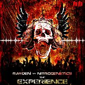 The Experience - EP de Various Artists