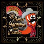 Los Sones Jarochos Más Picantes by Artistas Varios