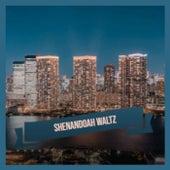 Shenandoah Waltz von Various Artists