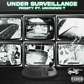 Under Surveillance by Frosty