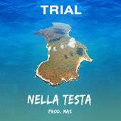 Nella Testa de Trial