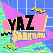 Yaz Şarkıları de Various Artists