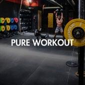 Pure Workout de Various Artists