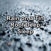 Rain on a Tin Roof Deep Sleep by Baby Sleep Sleep