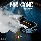 Too Gone (Radio Edit) by TheRealEvk