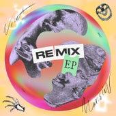 Newt Mansion (Remixes) von Twinkids