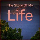 The Story Of My Life by Various Artists