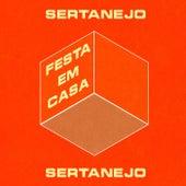 Festa em Casa Sertanejo de Various Artists