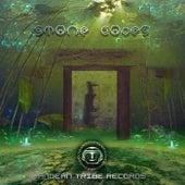 Stone Codes de Various Artists