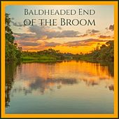 Baldheaded End of the Broom von Various Artists