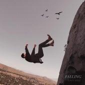 Falling by Gavii Wise
