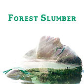 Forest Slumber – Nature Sounds, Relaxing New Age Music, Good and Long Sleep by Dreaming Sound Best Sleep Music Academy