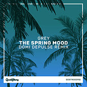 The Spring Mood (Domi Depulse Remix) by Grey