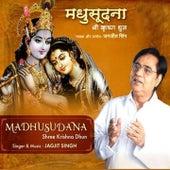 Madhusudana-Shree Krishna Dhun von Jagjit Singh