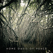 Home Oasis of Peace: Serene Background Music for a Time of Rest and Total Relaxation by Music to Relax in Free Time