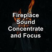 Fireplace Sound Concentrate and Focus de Spa Music (1)