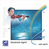My Spring by Shadmehr Aghili