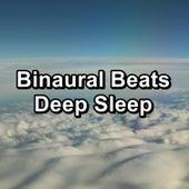 Binaural Beats Deep Sleep de Binaural Beats