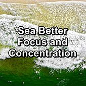 Sea Better Focus and Concentration by Spa Music (1)
