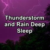 Thunderstorm and Rain Deep Sleep by Binaural Beats Sleep