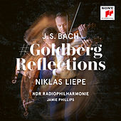 Goldberg's Last Summer for Violin, Piano and String Orchestra by Niklas Liepe