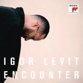 Encounter by Igor Levit