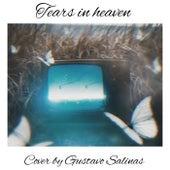 Tears in heaven (Cover) de Gustavo Salinas